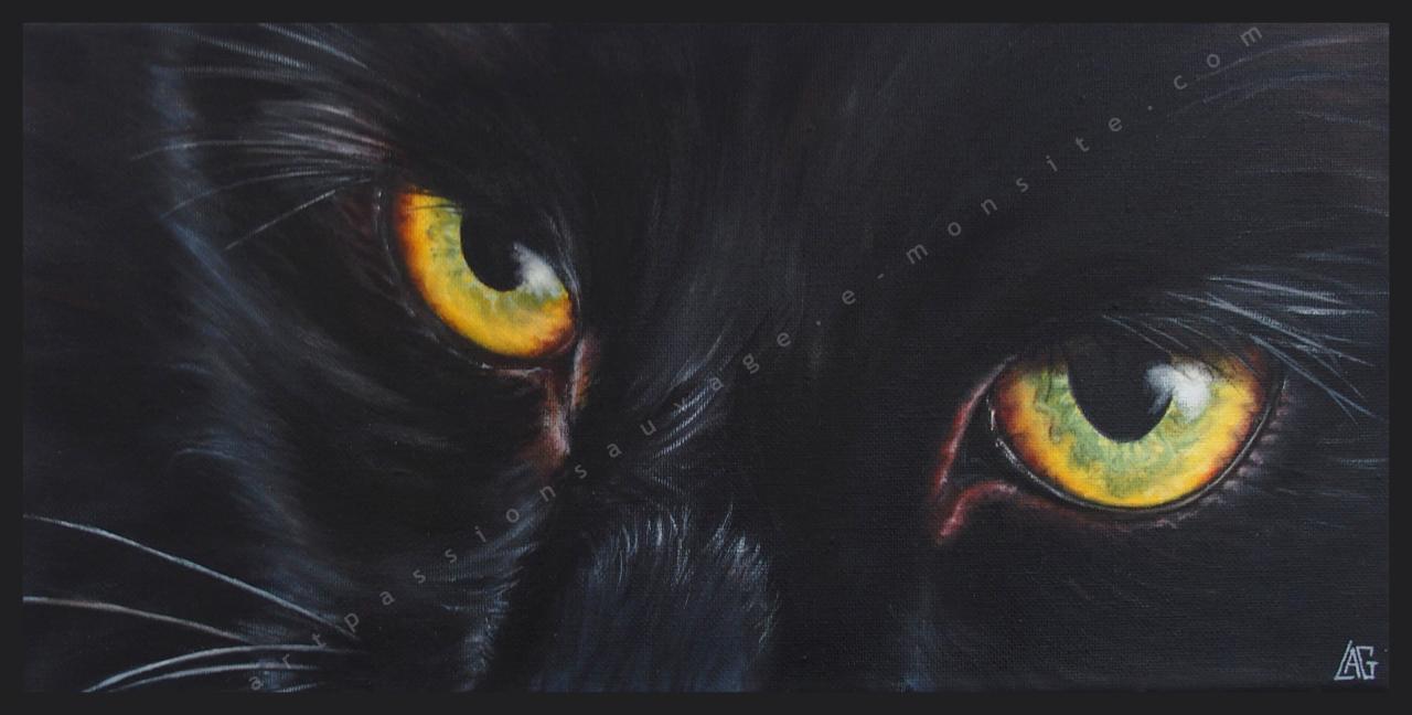 Black cat !