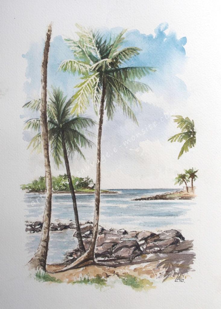 Sur l'île Royale, au large de Kourou