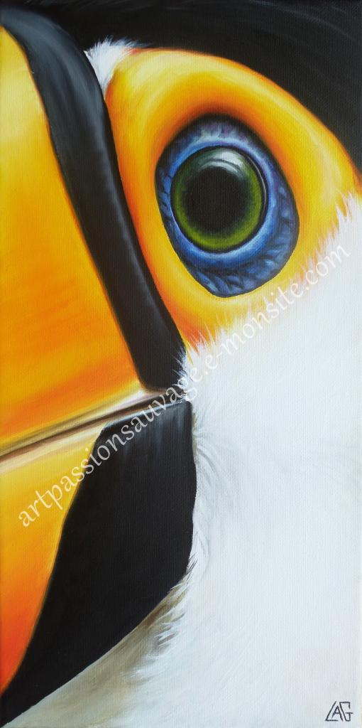 L'oeil du Toucan toco