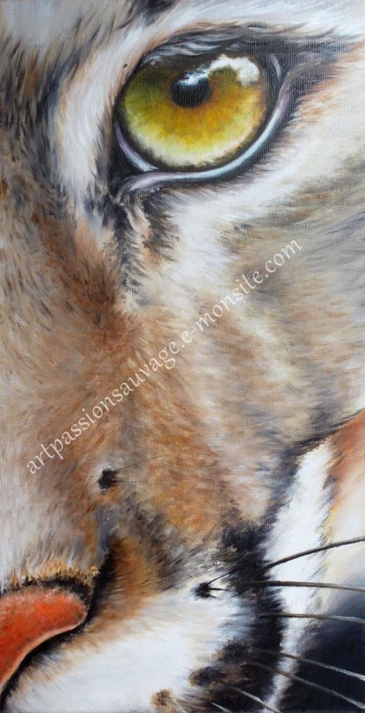 L'oeil du Puma