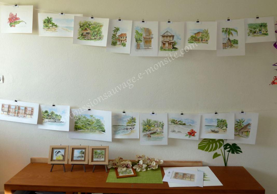 Mes aquarelles sur le mur de notre  bureau...