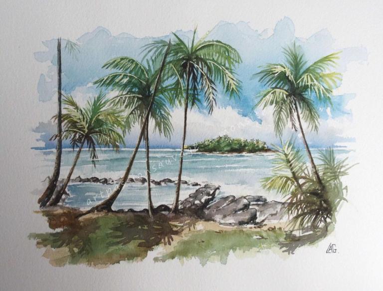 L'île du Diable au large de l'île Royale - Guyane