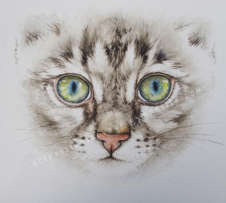 chat aquarelle (en cours de réalisation)