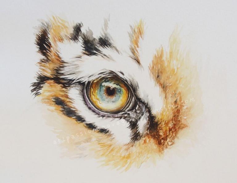 Détails tigre aquarelle