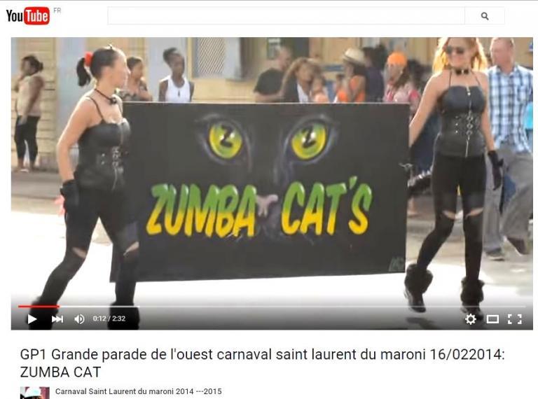 Banderole Zumba Cat's