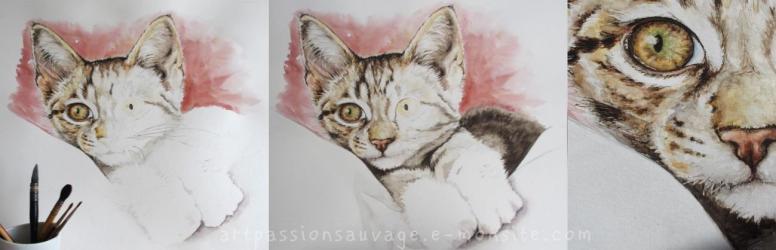 Pas à pas chaton à l'aquarelle