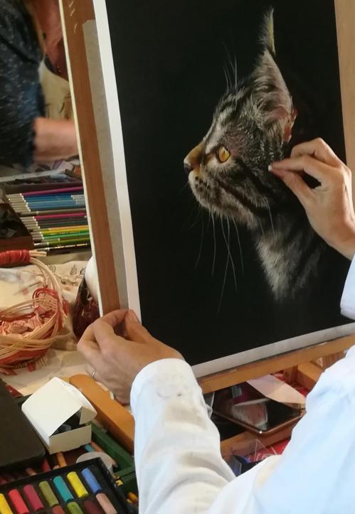chat au pastel