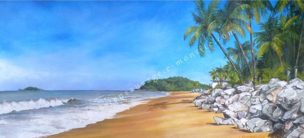 Plage des Salines - Guyane