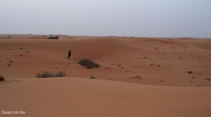 Desert d'Al Ain