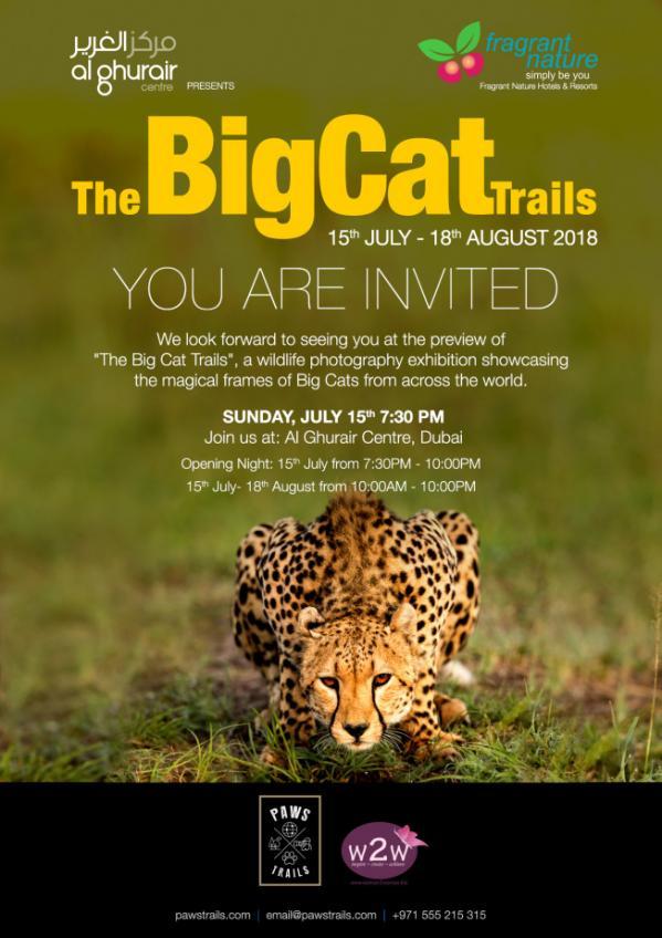Bigcattrails invite 03