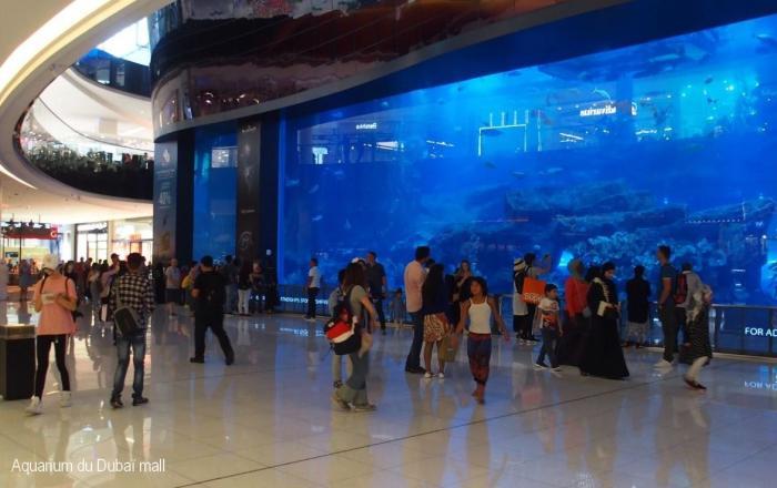 Aquarium dans le Dubaï Mall