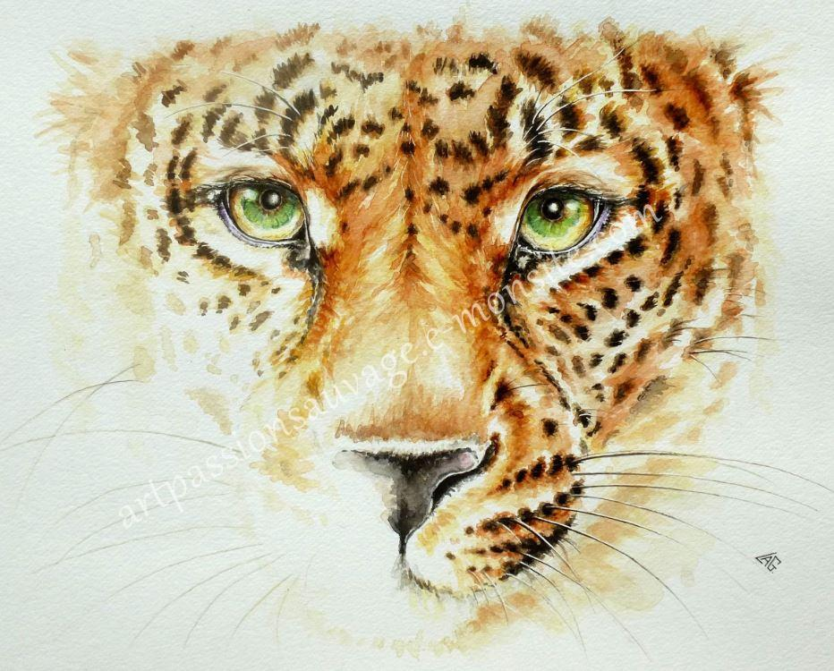 Portrait de jaguar
