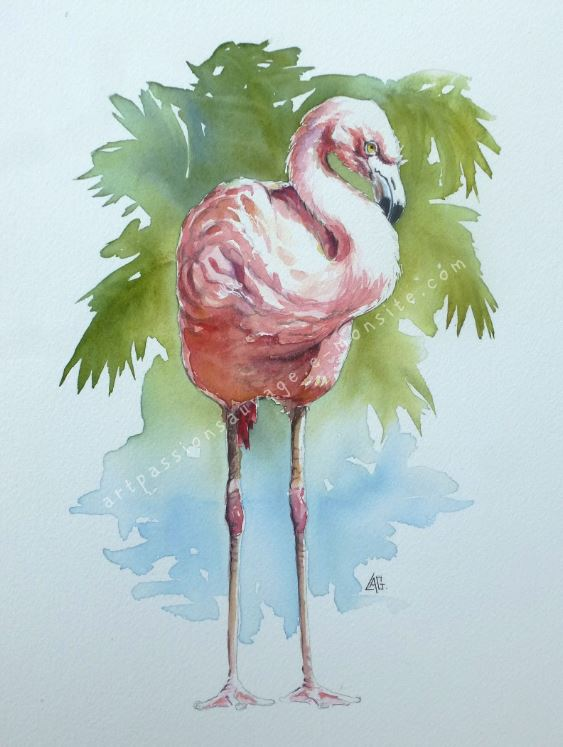 Flamant rose aquarelle