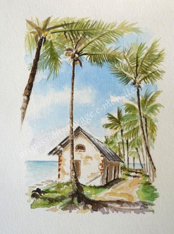 Sur l'Île Royale