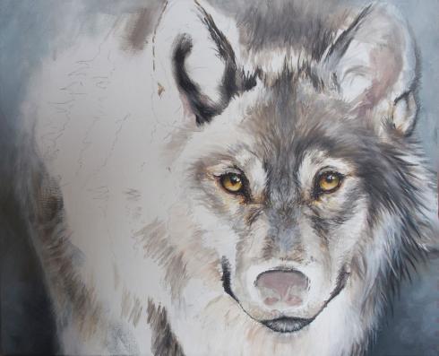 Loup acrylique