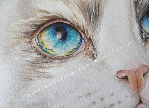 Détail chat aquarelle