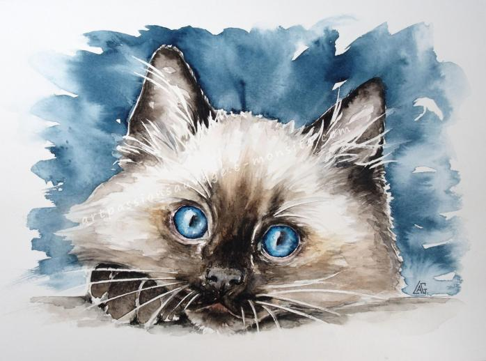 Peinture chat aquarelle