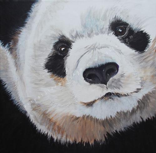 Panda acrylique