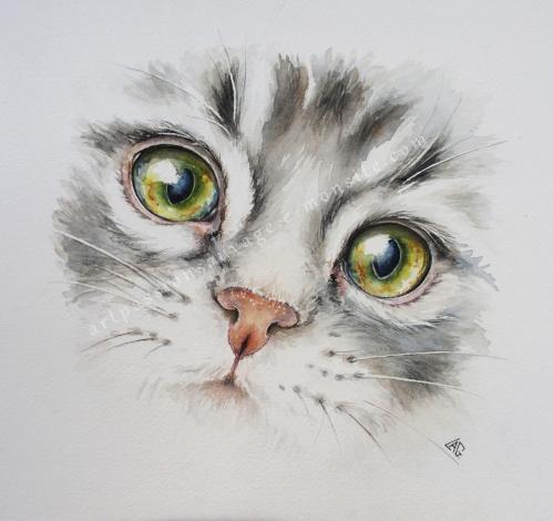 Chat Aquarelle 30x30 cm