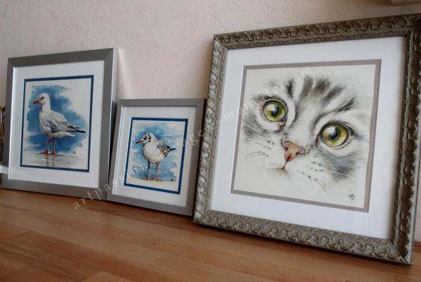 Aquarelle chat, mouettes...