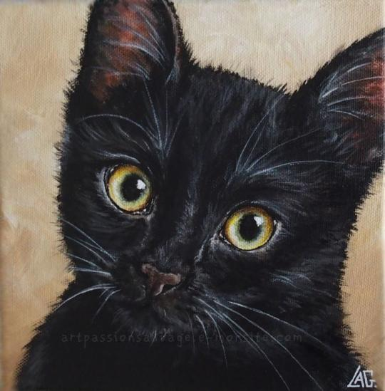 Chat acrylique